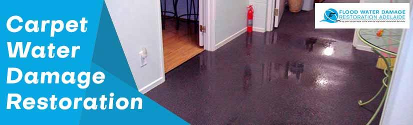 Carpet Water Damage Restoration Adelaide
