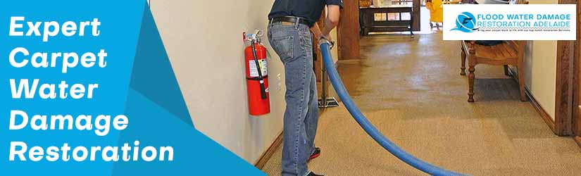 Expert Carpet Water Damage Restoration Adelaide