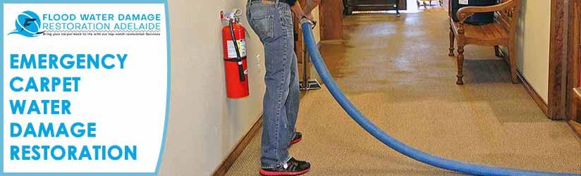 Emergency Carpet Water Damage Restoration Adelaide