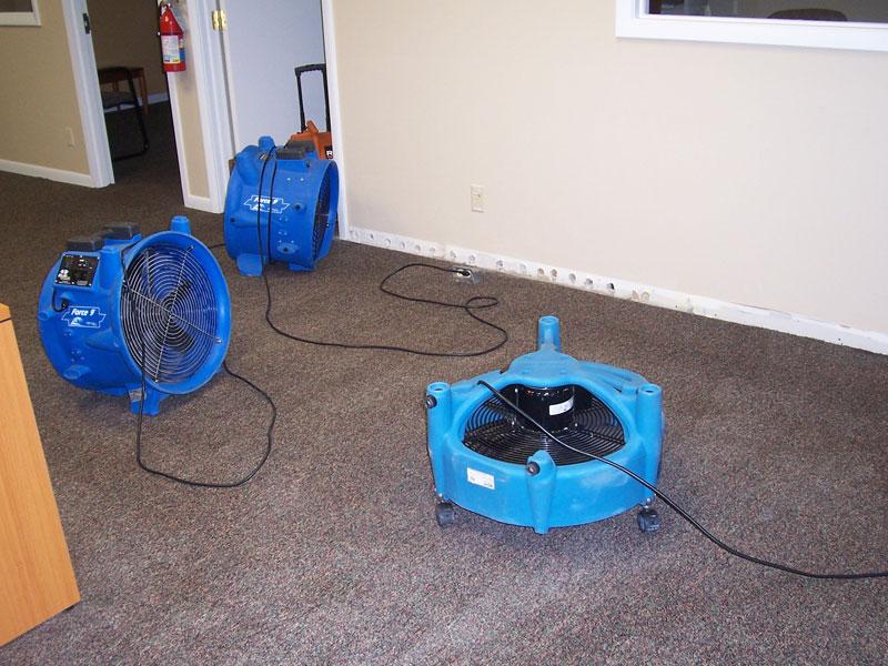 Local Carpet Restoration Service