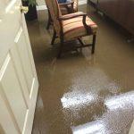 Same Day Carpet Flood Water Damage Restoration