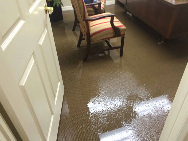 Same Day Carpet Flood Water Damage Restoration