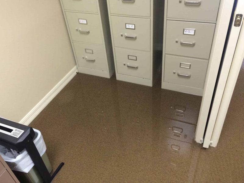 Wet Carpet Extraction