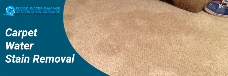 Carpet Water Stain Removal
