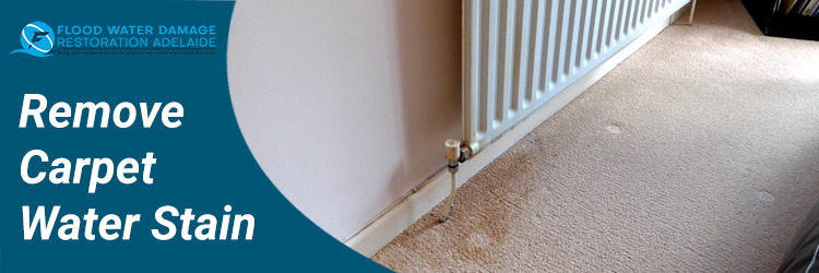 Remove Carpet Water Stain