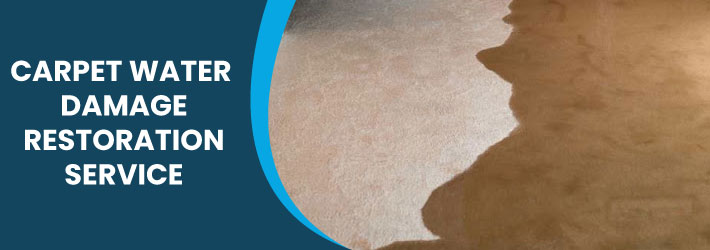 Carpet Water Damage Restoration Service
