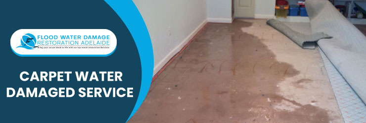 Carpet Water Damaged Service