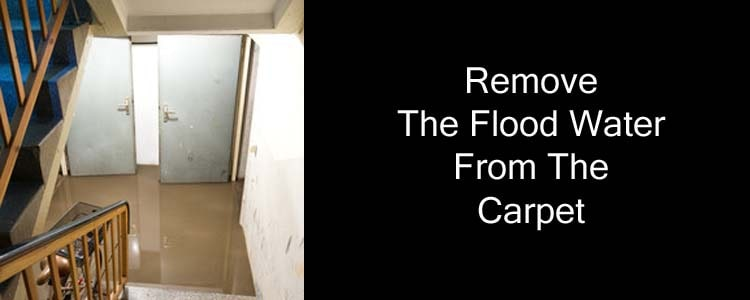 Remove The Floodwater from The Carpet